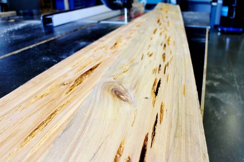 Пораженная древесина кипариса