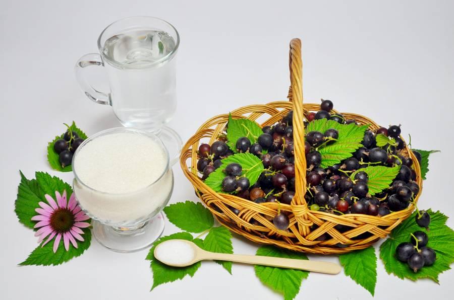 Ингредиенты для консервированной йошты