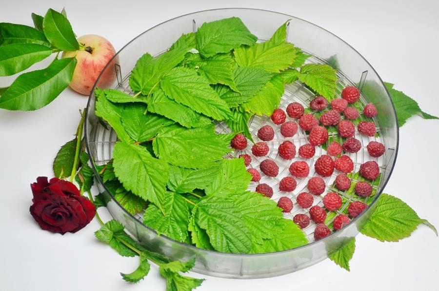 Приготовление чая из персика и малины