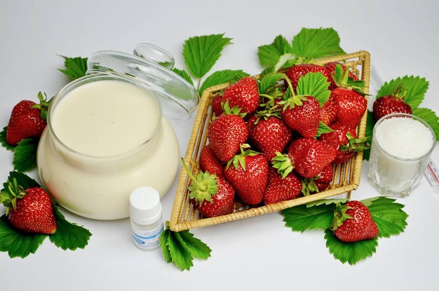 Ингредиенты для домашнего йогурта с клубникой