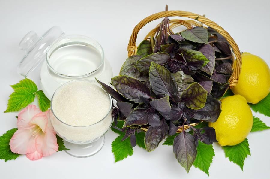 Ингредиенты для напитка из базилика и лимона