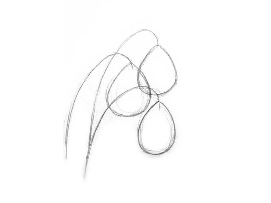 Поэтапный рисунок подснежника шаг 2