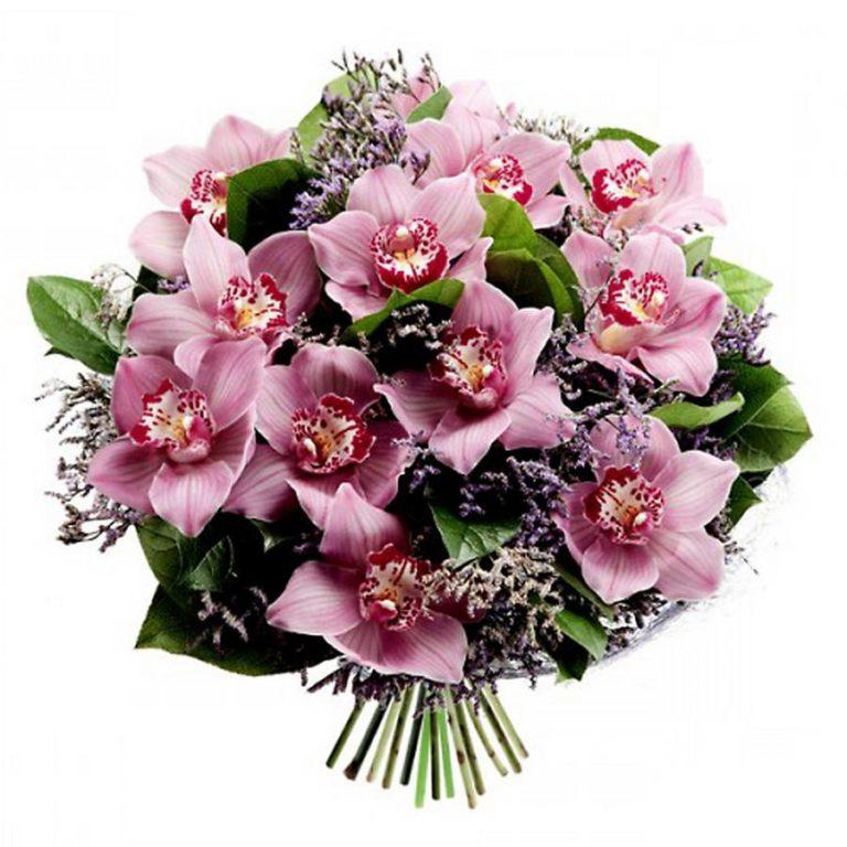 картинки букетов орхидеи них хочется сделать