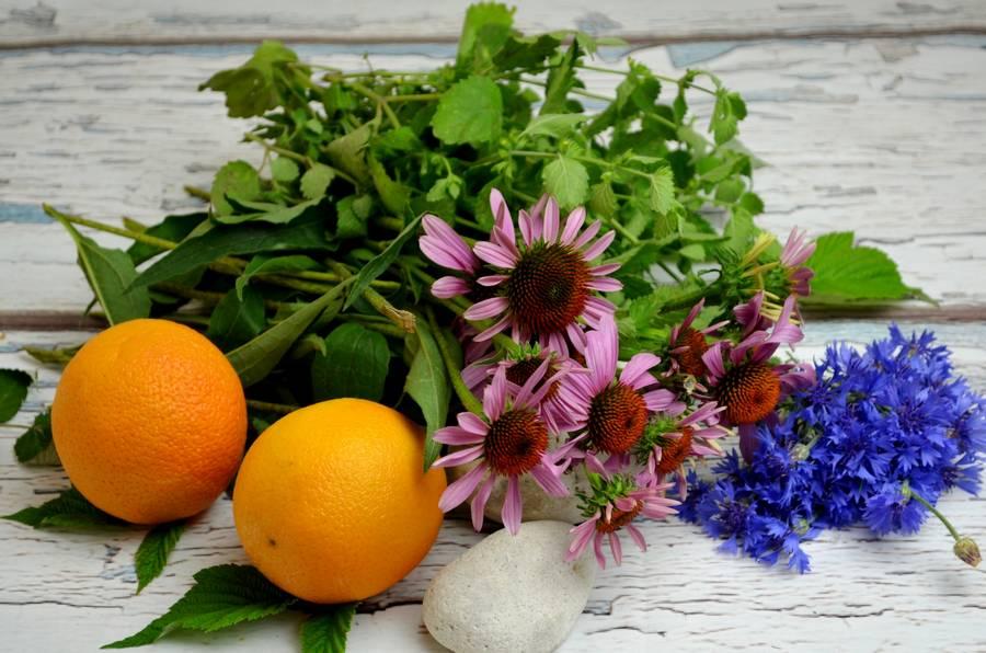 Ингредиенты домашнего травяного чая