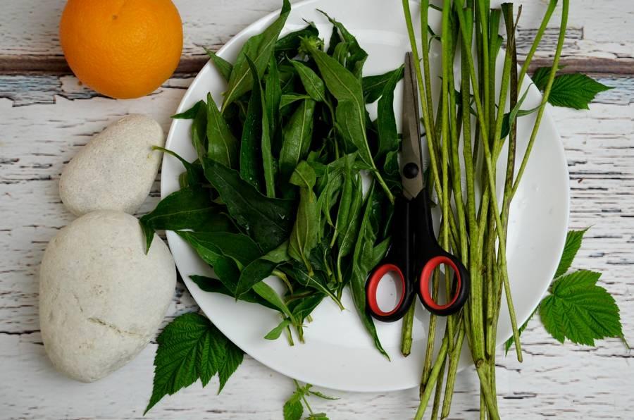 Приготовление травяного чая в домашних условиях шаг 4