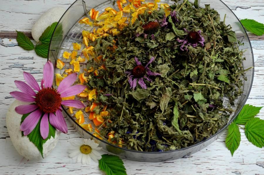 Приготовление травяного чая в домашних условиях шаг 8