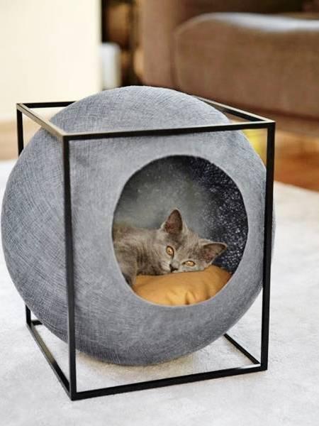 Кошка в круглом домике